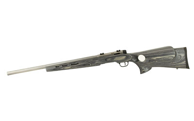 "SAVAGE BMAG TARGET .17WSM 22"" HB ACCU TRIG SS/GRY LAM T-HOLE - for sale"